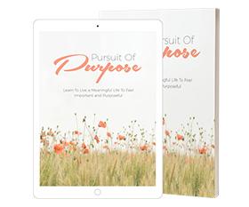 Pursuit Of Purpose